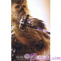 Disney Star Wars Weekends 2015 Week 5 Chewbacca Passholder Poster Event Exclusive