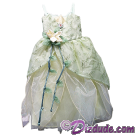 Disney Theme Park Princess Tiana Dress