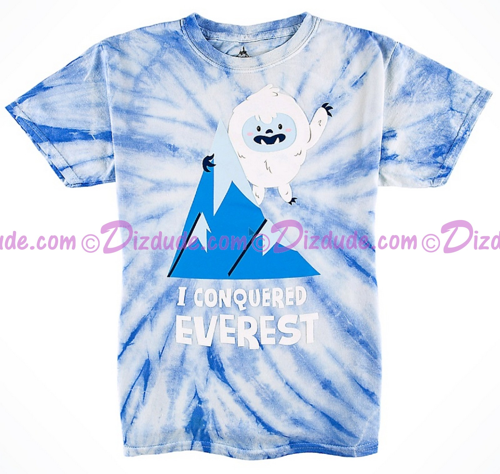 I Conquered Expedition Everest Tie-Dyed Youth T-Shirt (Tee, Tshirt or T shirt) ~ Disney Animal Kingdom