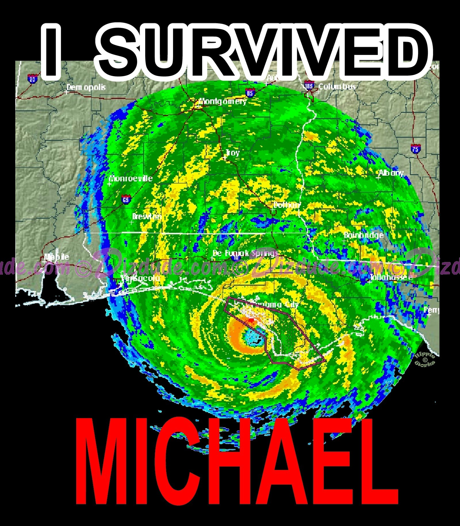 I Survived Hurricane Michael T-Shirt or Tank Top (Tshirt, T shirt or Tee) © HIPPIEWORKS
