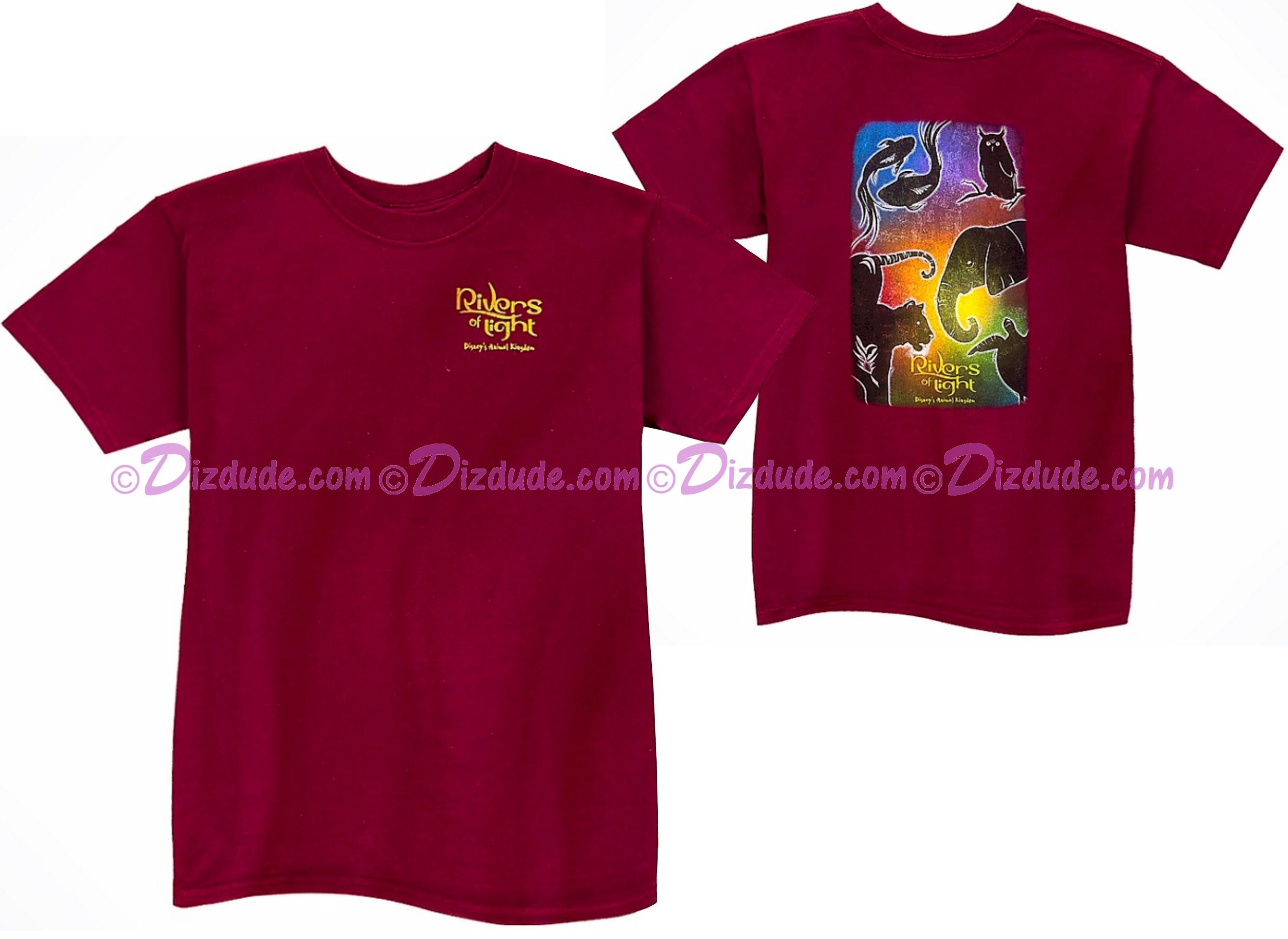 Rivers Of Light Youth T-Shirt (Tee, Tshirt or T shirt) ~ Disney Animal Kingdom