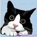 Cute Big Kitten Eyes T-Shirt and Tank Top (Tshirt, T shirt or Tee)