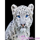 Snow Leopard Cub T-Shirt or Tank Top (Tshirt, T shirt or Tee) © HIPPIEWORKS