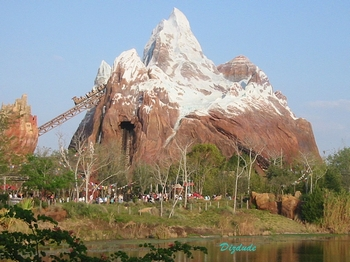 Disney's Animal Kingdom - Expedition Everest ~ Legend of the Forbidden Mountain Ride/ Attraction